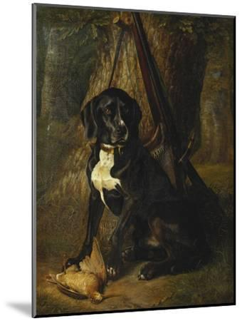 A Gun Dog with a Woodcock-William		 Hammer-Mounted Giclee Print