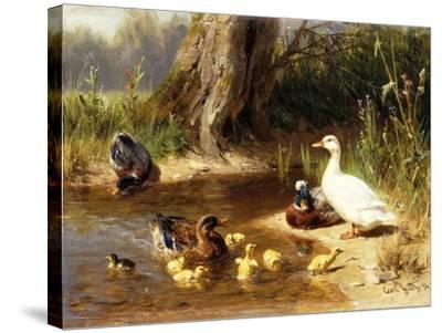 Ducks at the Water's Edge-Carl Jutz-Stretched Canvas Print