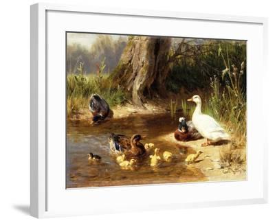 Ducks at the Water's Edge-Carl Jutz-Framed Giclee Print