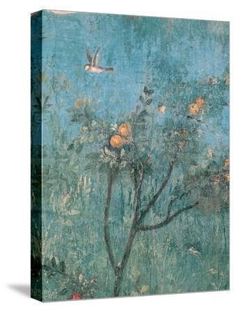 Summer Triclinium: Garden Paintings, 20, 1st Century, Mural--Stretched Canvas Print