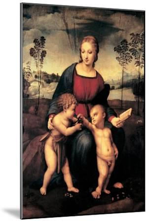 Madonna with Child and the Infant John the Baptist (Madonna of Goldfinch)-Sanzio Raffaello-Mounted Giclee Print