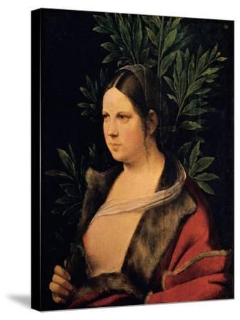 Portrait of a Young Woman (Laura)-Giorgione da Castelfranco-Stretched Canvas Print