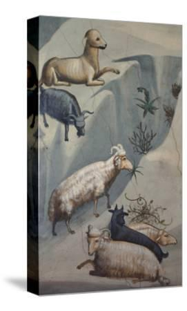 Dream of Joachim, Sheep-Giotto di Bondone-Stretched Canvas Print