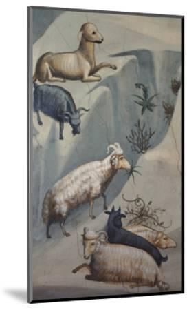 Dream of Joachim, Sheep-Giotto di Bondone-Mounted Art Print