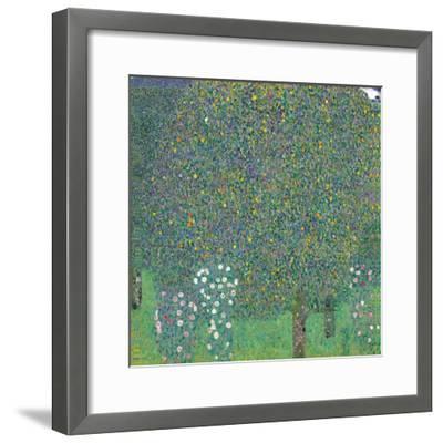 Rosebushes Under the Trees-Gustav Klimt-Framed Art Print