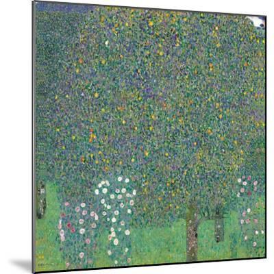 Rosebushes Under the Trees-Gustav Klimt-Mounted Art Print