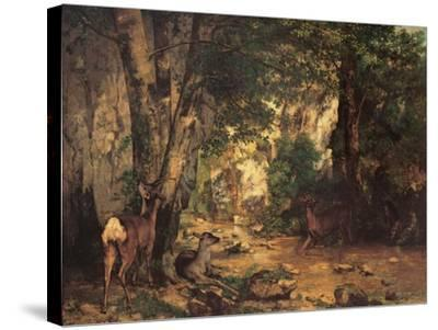 Thicket of Roe Deer at the Stream of Plaisir Fontaine-Gustave Courbet-Stretched Canvas Print