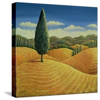 Cypress Tree and Cornfields, 1990-Liz Wright-Stretched Canvas Print