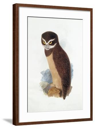 Spectacled Owl, August 1836-Edward Lear-Framed Giclee Print