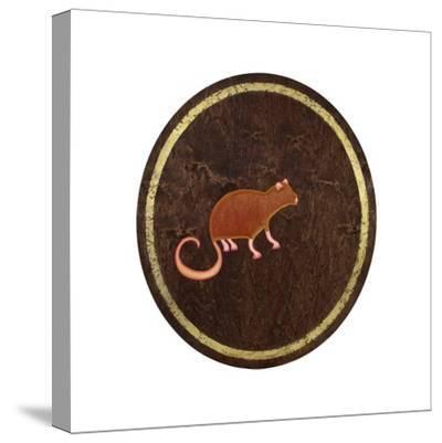 The Rat, 2009-Cristina Rodriguez-Stretched Canvas Print