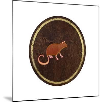 The Rat, 2009-Cristina Rodriguez-Mounted Giclee Print