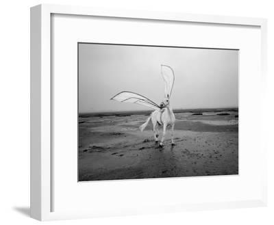 Pegasus 2-Jaschi Klein-Framed Premium Photographic Print