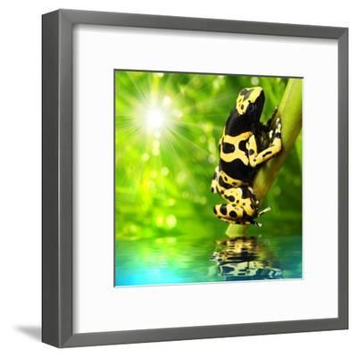 The Frog (Dendrobates Leucomelas) In A Rainforest-Kletr-Framed Art Print