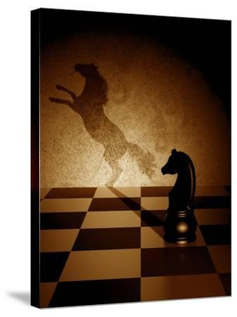 Black Knight With An Art Shadow As A Wild Horse-viperagp-Stretched Canvas Print