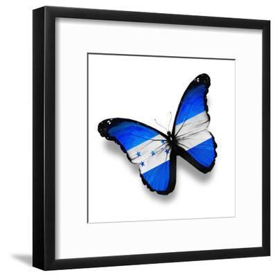 Honduras Flag Butterfly, Isolated On White-suns_luck-Framed Art Print