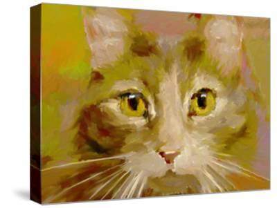Orange Cat - Digital Oil Painting-anatomyofrockthe-Stretched Canvas Print