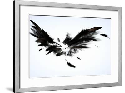 Black Wings-Sergey Nivens-Framed Art Print