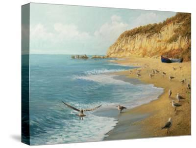 The Beach-kirilstanchev-Stretched Canvas Print