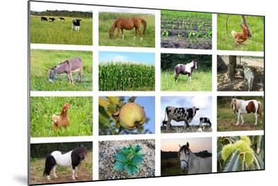 Farm Collage- miff32-Mounted Art Print