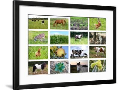 Farm Collage- miff32-Framed Art Print