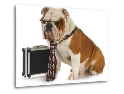 Business Dog - English Bulldog Male Wearing Tie And Glasses Sitting Beside Briefcase-Willee Cole-Metal Print
