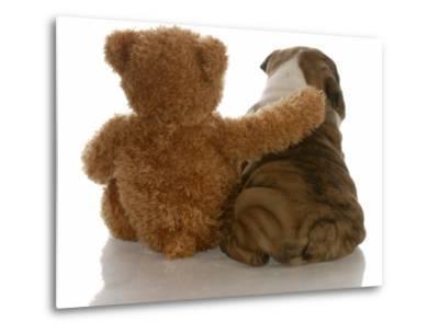 Best Friends - English Bulldog Puppy Sitting Beside Bear-Willee Cole-Metal Print
