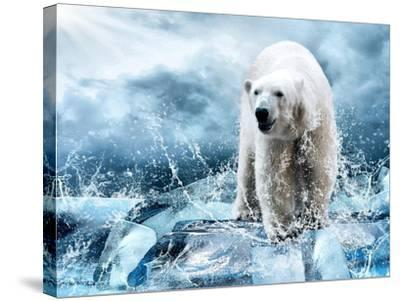 White Polar Bear Hunter On The Ice In Water Drops-yuran-78-Stretched Canvas Print