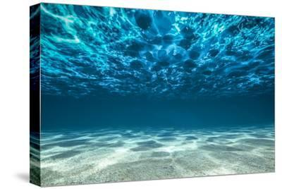 Ocean Bottom, View Beneath Surface-Cico-Stretched Canvas Print