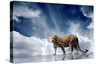 Predator Stay On The Sky Background-yuran-78-Stretched Canvas Print