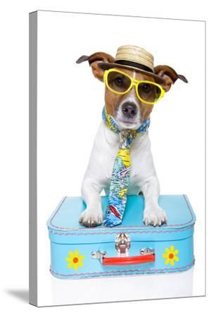 Tourist Dog With A Hat , Sunglasses And A Bag-Javier Brosch-Stretched Canvas Print