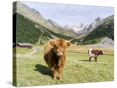 Valley Pfossental, Tyrol, Austria-Martin Zwick-Stretched Canvas Print