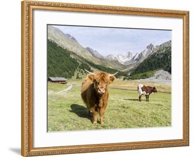 Valley Pfossental, Tyrol, Austria-Martin Zwick-Framed Photographic Print