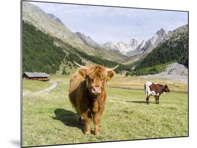 Valley Pfossental, Tyrol, Austria-Martin Zwick-Mounted Photographic Print