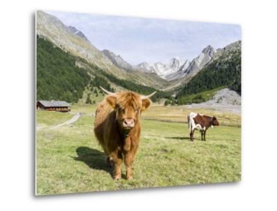 Valley Pfossental, Tyrol, Austria-Martin Zwick-Metal Print