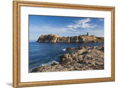 Lighthouse and Tower, Ile De La Pietra, Ile Rousse, Corsica, France-Walter Bibikow-Framed Photographic Print