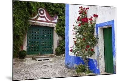 Street Along Obidos, Leiria, Portugal-Julie Eggers-Mounted Photographic Print
