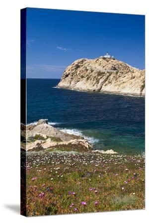 Lighthouse, Ile De La Pietra Islant, Ile Rousse, Corsica, France-Walter Bibikow-Stretched Canvas Print