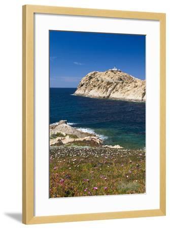 Lighthouse, Ile De La Pietra Islant, Ile Rousse, Corsica, France-Walter Bibikow-Framed Photographic Print