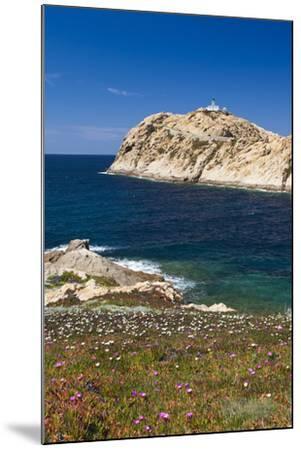 Lighthouse, Ile De La Pietra Islant, Ile Rousse, Corsica, France-Walter Bibikow-Mounted Photographic Print