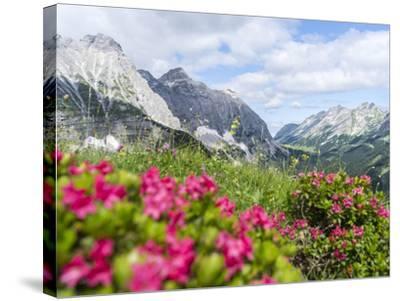 Karwendel Mountain Range, Tyrol, Austria-Martin Zwick-Stretched Canvas Print
