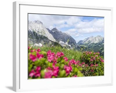 Karwendel Mountain Range, Tyrol, Austria-Martin Zwick-Framed Photographic Print