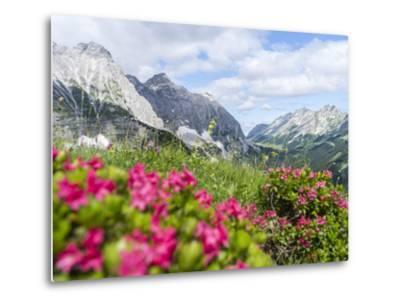 Karwendel Mountain Range, Tyrol, Austria-Martin Zwick-Metal Print