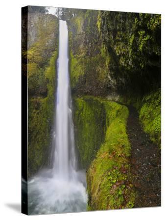 Tunnel Falls on Eagle Creek, Columbia Gorge, Oregon, USA-Gary Luhm-Stretched Canvas Print