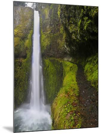 Tunnel Falls on Eagle Creek, Columbia Gorge, Oregon, USA-Gary Luhm-Mounted Photographic Print