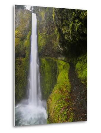 Tunnel Falls on Eagle Creek, Columbia Gorge, Oregon, USA-Gary Luhm-Metal Print