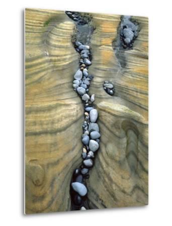 Rocks Caught in Sandstone Formations, Seal Rock Beach, Oregon, USA-Jaynes Gallery-Metal Print