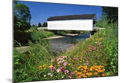 Gallon House Covered Bridge over Abiqua Creek, Oregon, USA-Jaynes Gallery-Mounted Photographic Print