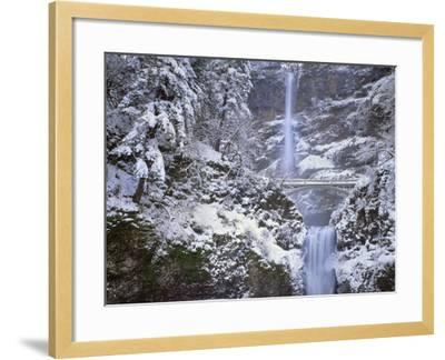 Winter Scenic at Multnomah Falls, Columbia River Gorge, Oregon, USA-Jaynes Gallery-Framed Photographic Print