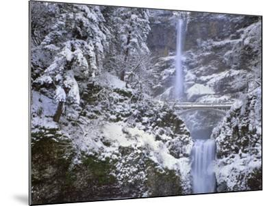 Winter Scenic at Multnomah Falls, Columbia River Gorge, Oregon, USA-Jaynes Gallery-Mounted Photographic Print