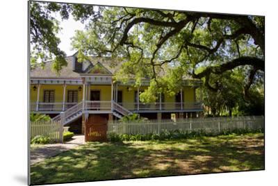 Laura' Historic Antebellum Creole Plantation House, Louisiana, USA-Cindy Miller Hopkins-Mounted Photographic Print